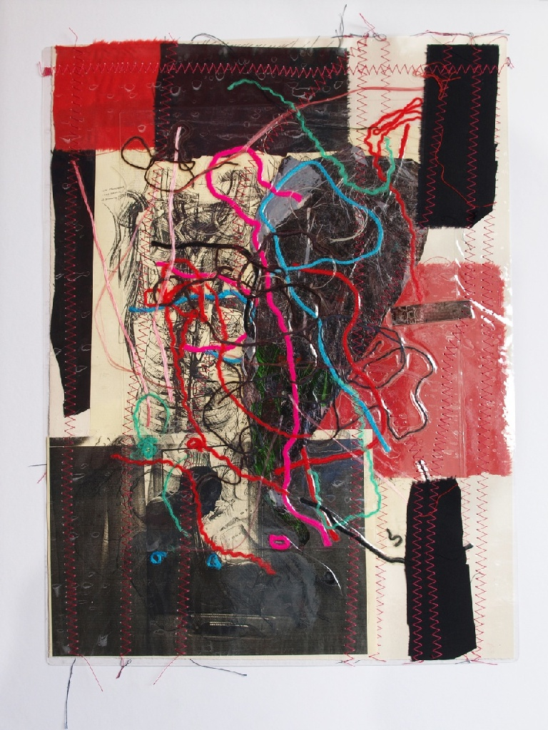 Stitched collage 3